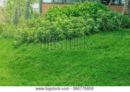 Green Grass., Modern House With Beautiful Landscaped Front Yard, Lawn And Garden Blur Background., T