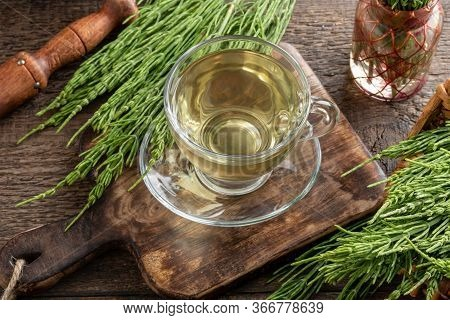 A Cup Of Herbal Tea With Fresh Horsetail