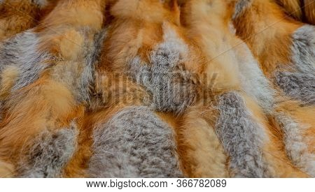Red Fox Fur As A Texture And Background