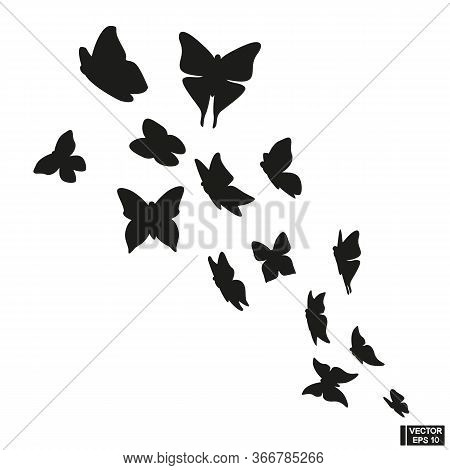 Set Of Black Flying Butterfly Silhouette On White Background.