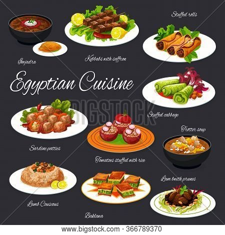 Egyptian Cuisine Meals Vector Menu Template. Imjadra, Kebbab With Saffron, Stuffed Rolls And Cabbage