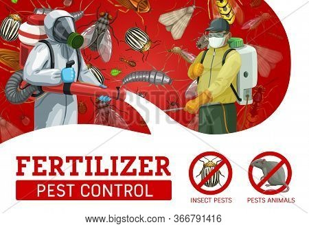Pest Control Workers Spraying Insecticide Against Insects And Rodents. Vector Exterminators In Chemi