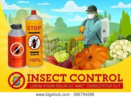Insect And Pest Control. Worker Spraying An Insecticide With Pressure Sprayer Against An Insects. Pe
