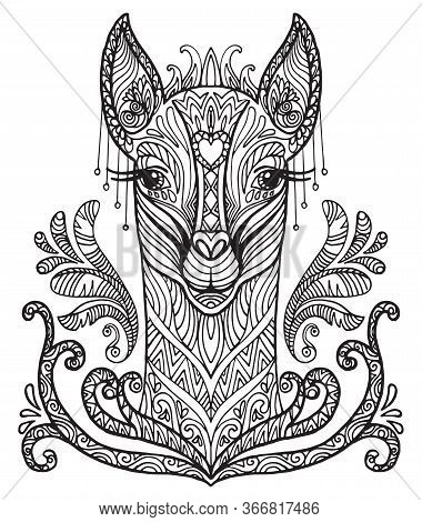 Vector Decorative Doodle Ornamental Head Of  Lama. Abstract Vector Illustration Of Lama Black Contou