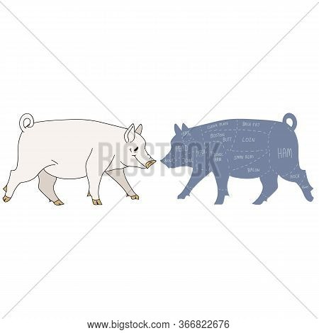 Cute French Farmhouse Pig With Butcher Chart Vector Clipart. Hand Drawn Shabby Chic Style Country Fa