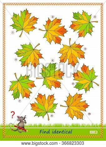 Logic Puzzle Game For Children And Adults. Find Two Identical Leaves. Printable Page For Kids Brain