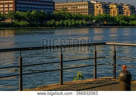 Frankfurt,germany - May 16,2020:westhafen A Cute Cuddly Toy Is Posing In Front Of The Main And Moder