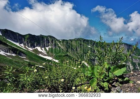 A Magnificent Panorama Of The Caucasus. Sunny Joyful Summer Day. On The Slopes Of The Mountains Are