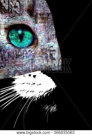 Mixed Media Art Collage. Close Up View Of Cat With Green Eyes. Cut Portrait On Newspaper Paper Print