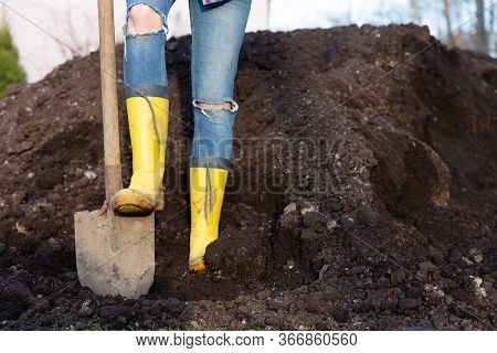 Women In  Yelow Rubber Boots Standing By Balck Earth/compost. Gardening Concept