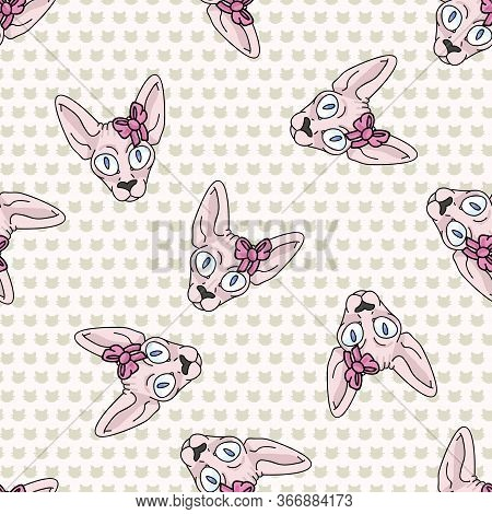 Cute Cartoon Sphynx Kitten Face With Pink Bow Seamless Vector Pattern. Pedigree Exotic Kitty Breed D
