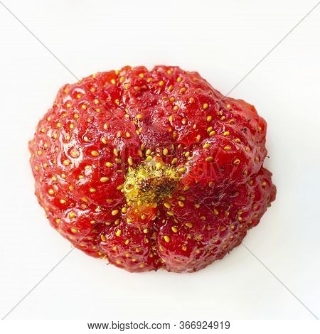 One Oval Ugly Ripe Organic Strawberry With Yellow Tip On White Background Top View. Close Up, Isolat