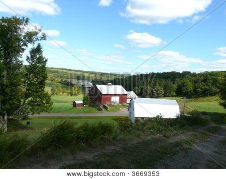 Two barns in New York State on a hill by a lake poster