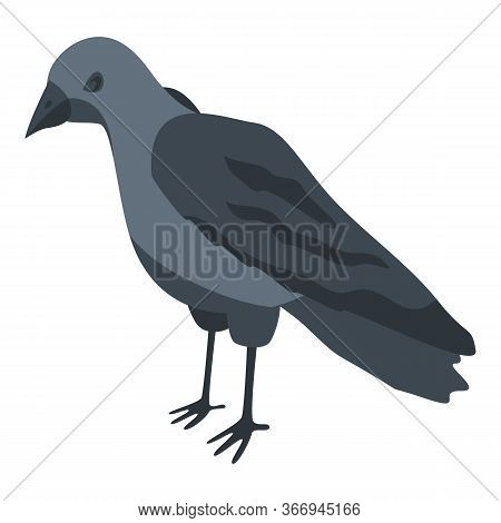 Black Crow Icon. Isometric Of Black Crow Vector Icon For Web Design Isolated On White Background
