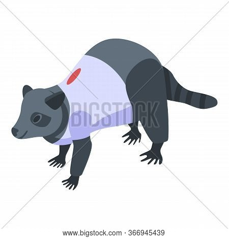 Dressed Raccoon Icon. Isometric Of Dressed Raccoon Vector Icon For Web Design Isolated On White Back