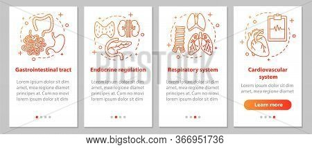 Human Anatomy Onboarding Mobile App Page Screen With Linear Concepts. Respiratory And Cardiovascular