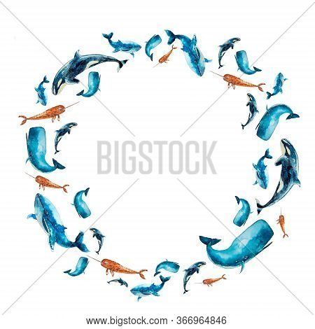 Set Of Watercolor Frame With Whales Isolated On White. Sketched Colorful Round Wreath, Groups, Garla