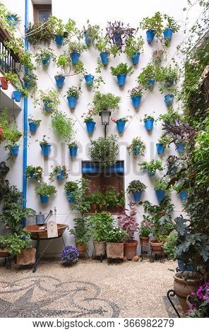 Beautiful Andalusian patio facade decorated with plants hanging from the wall in blue pots and spread over mosaic stone floors. Cordoba, Andalusia, Spain. Travels and tourism.