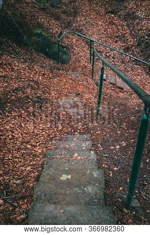 Red Autumn Forest Park Stair Landscape. Autumn Forest Stairway View. Red Autumn Forest Stairway Down