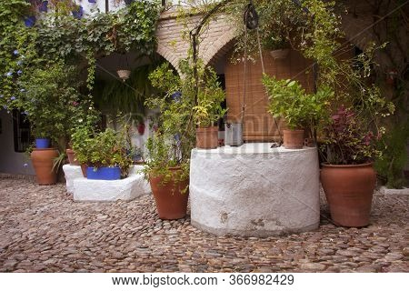 Detail of a typical Andalusian patio with stone floor, water well and decorated with different types of plants and pots. Cordoba, Andalusia, Spain. Travels and tourism.