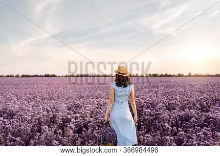 Woman Staying In Purple Flowers Field At Sunset In Blue Dress And Straw Hat.