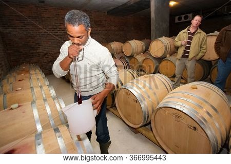 Hermanus, South Africa - July 16, 2009: African Winemaker Vigneron Checking On A Batch Of Red Wine I