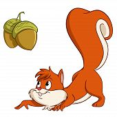 Cute cartoon squirrel sneak up to nuts. Vector illustration. poster