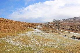 Snow On Dartmoor, Devon, In The Winter