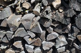 Stacked Old Rotten Dirty Gray Firewood, Stocks. The Photo Was Taken On A Sunny Day In Bright Light