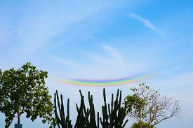 Circumzenithal Phenomenon Of Rainbow Appear On Blue Sky White Cloud