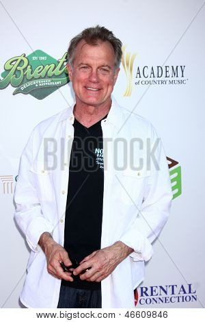 LOS ANGELES - JUN 8:  Stephen Collins at the 2nd Annual T.H.E EVENT at the Calabasas Tennis and Swim Center on June 8, 2013 in Calabasas, CA