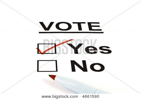Yes / No Vote Ballot Form With Yes Checked