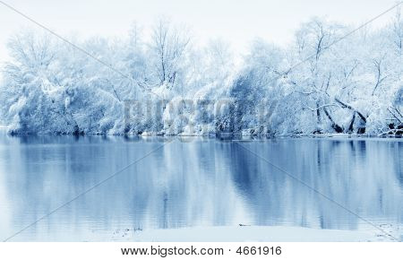 River And Trees In Winter