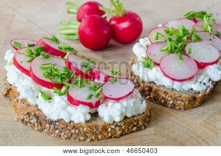 Cereal bread with cottage cheese and radish