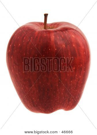 Red Delicious Apple