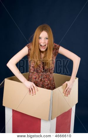 Red-haired Posing In Box