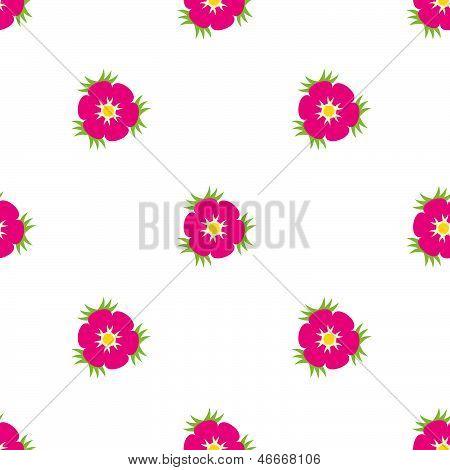 Eglantine Wildrose Seamless Pattern