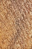 Medieval inscriptions carved on the stone wall. Polonnaruva Sri lanka poster
