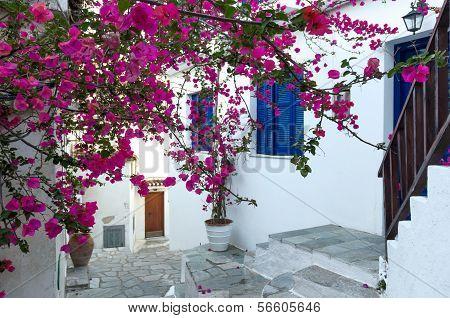 Traditional Mediterranean House