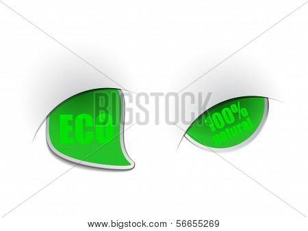 Ecological green web tag. Abstract Vector illustration poster