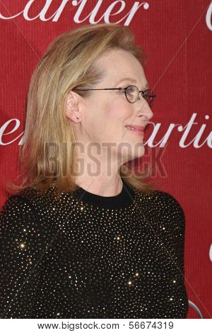 PALM SPRINGS - JAN 4:  Meryl Streep at the Palm Springs Film Festival Gala at Palm Springs Convention Center on January 4, 2014 in Palm Springs, CA