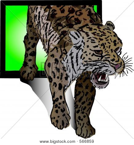 Snow Leopard (vector)