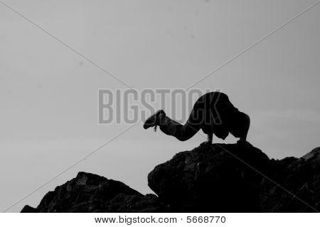 Extreme Rock Balancing