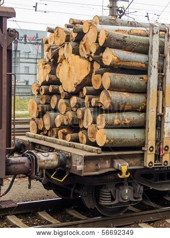 wagon of the railroad loaded with wood. freight train. freight rail