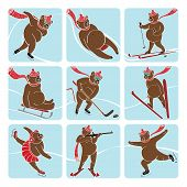 Nine brown bear plays a winter sport : sprint,Luge,ski,ssledges,ice hockey,ski, jumping,figure ,skating,biathlon. Screensavers,icons.Humorous illustration. poster