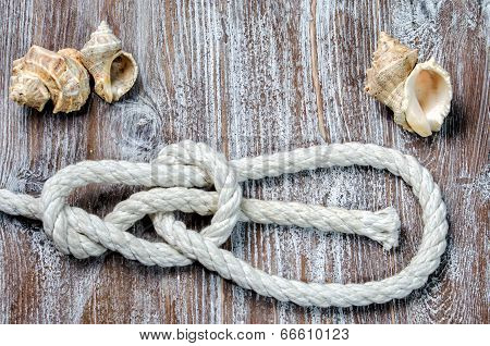 marine rope tied knot Bowline
