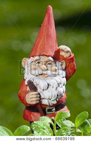 Little Funny Garden Gnome In The Garden