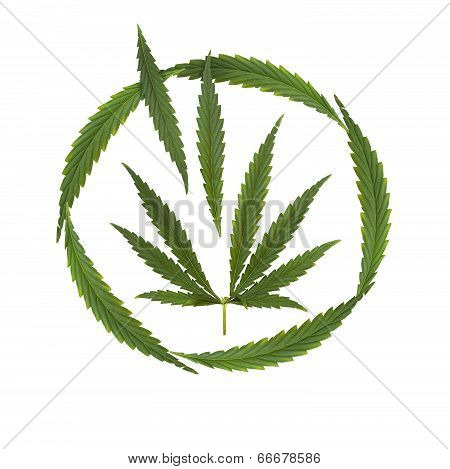 Marijuana Legalized - Creative Collage