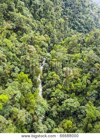 Rio Mindo, Western Ecuador, River Running Through Cloudforest At 1,400M Elevation.
