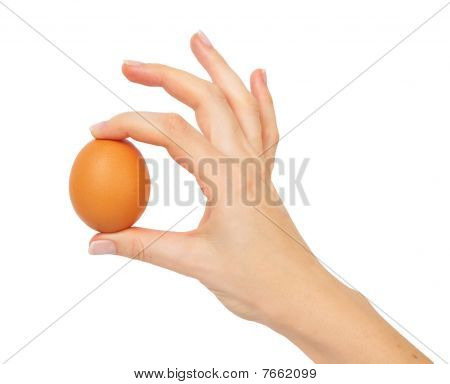 Hand Holding A Brown Egg